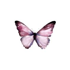 62 Ideas tattoo butterfly colour wings for 2019 Butterfly Wallpaper, Butterfly Flowers, Pink Wallpaper, Wallpaper Backgrounds, Trendy Tattoos, Small Tattoos, Marshmello Wallpapers, Watch Wallpaper, Instagram Highlight Icons