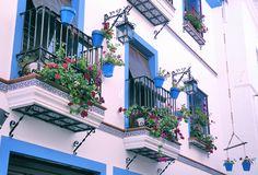 Los balcones de Berja se engalanan en primavera con multitud de flores.