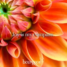 Joy is my compass ⊰❁⊱ Daily Positive Affirmations, Morning Affirmations, Positive Words, Joy Quotes, Peace Quotes, New Mexico Road Trip, Journal Quotes, The Power Of Love, Joy And Happiness