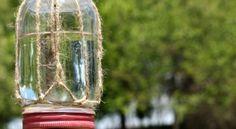 Como Fazer um Alimentador de Borboletas | Reciclagem no Meio Ambiente