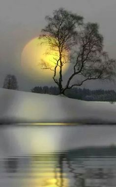 The Story Of Us isn't Myth . it will continue to give back . give back in totally unforeseeable beaute ways . thank you for sharing my vision. Moon Photography, Landscape Photography, Winter Scenery, Moon Art, Nature Wallpaper, Nature Pictures, Amazing Nature, Pretty Pictures, Beautiful Moon Pictures
