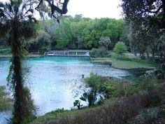 Rainbow Springs State Park, Dunnellon, FL