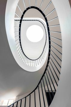 luigi rosselli architects, stairs, interior stairs, home stairs, curved stairs. Concrete Stairs, Deck Stairs, Luigi, Types Of Stairs, Architecture Arc, Blown Glass Pendant Light, Crazy Paving, Treads And Risers, Steel Railing