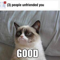 Community Post: 14 Hilarious Grumpy Cat Memes That Will Make You Smile Meme Grumpy Cat, Cat Memes, Funny Memes, Grumpy Kitty, Grumpy Baby, Grump Cat, Jokes, That's Hilarious, Funny Qoutes