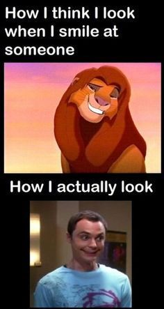 funniest memes ever the lion king - Google Search                                                                                                                                                      More