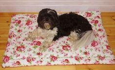 Hundekissen Hundebett Körbchen Hundematte Hundekörbchen Rosen-Design Korb in Haustierbedarf, Hunde, Betten | eBay