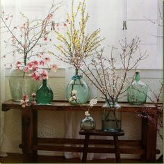 Love this look - rustic wooden bench showing off large glass jars/vases, some in colored glass, packed with flowering branches for indoor forcing - bring springtime inside! - from Elegant Nest