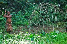 Yanomami culture essay introduction