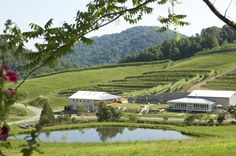 Delfosse Vineyards and Winery, Faber, VA
