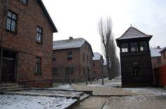 Auschwitz baraquement et mirador