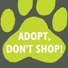 Adopt, Don't Shop! Logo for Pet Adoption UK