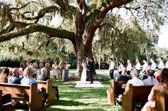 Florida wedding ceremony under an oak tree