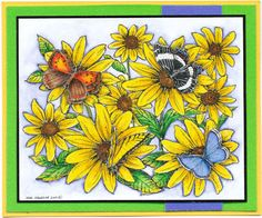 Northwoods - Brown eyed susan with butterflies