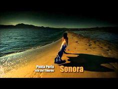Enio Morricone - Los 7 Magnificos (instrumentales de oro)