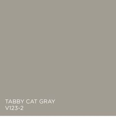 Tabby Cat Gray available at Independent Retailers. - A Interior Design Exterior Paint, Interior And Exterior, Cottage Exterior, Valspar Colors, Popular Paint Colors, Wall Colors, Paint Colours, Paint Swatches, Kitchen Cabinet Colors