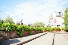 Zanim przyjdzie sezon… Miejskie skrzynki kwiatowe Flower Boxes, Flowers, Cities, Sidewalk, Urban, Plants, Window Boxes, Planter Boxes, Side Walkway