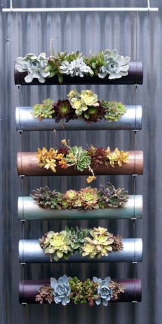 diy garden ideas Vertical gardens are a great way to create micro gardens either indoors or out, and can be used to grow all sorts of plants. Here are the 11 Best Ideas. Hanging Succulents, Hanging Pots, Succulents Garden, Garden Plants, Indoor Plants, Planting Flowers, Diy Hanging, Succulent Planters, Balcony Garden