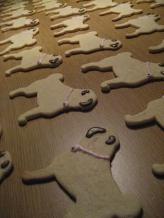 pug cookies and a link to where to get the cookie cutter
