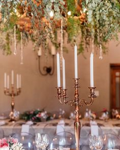 Long tables chandeliers from the ceiling with the dangling glimpse of crystals flowers candles lots of foliage and the laughter of our guests. . Click through to #ConfettiDaydreams.com #WeddingBlog to see all the gorgeous deets! . . . Venue #LangkloofRoses Photographer @debbielourens_photographer Videographer André Barkley from Cookie Factory Film ProductionsBridesmaid Dresses  Forever New Dress #IlseRouxBridal Brides Hair & Make Up: Laatson Skoonheid  Flowers & Decor Mint and Magnolia…