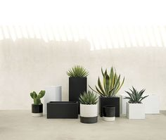 Give everyone green envy with modern planters and garden pots. Shop indoor and outdoor plant holders such as hanging pots, rail planters and more. Galvanized Planters, Black Planters, Modern Planters, Large Planters, Outdoor Planters, Outdoor Decor, Galvanized Steel, Contemporary Planters, Outdoor Lounge