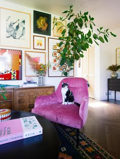 Home Design, Home Interior Design, Interior Plants, Colorful Interior Design, Interior Modern, Colorful Interiors, Interior Ideas, Design Design, Living Room Decor