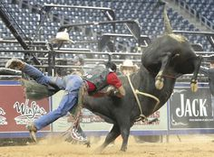 CAPTION CONTEST!! Best caption will win a PBR Prize Pack Monday (4/16) Morning!!