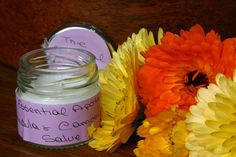 Organic Calendula and Chamomile Healing Salve for Distressed Skin. - pinned by pin4etsy.com