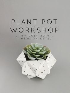 NEWTON LEYS WORKSHOP /// plant pots . 18th July . Origami workshop UK Plant Pots, Potted Plants, Origami Artist, Artificial Succulents, Pop Up, Workshop, Stationery, Place Card Holders, Crafty