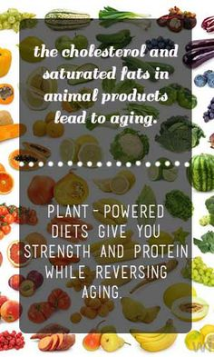 How Plant Protein Gives You Strength (Without Aging You) Plant Protein, Healthy Protein, Healthy Food, Nutrition Tips, Health And Nutrition, The China Study, Vegan Protein Sources, Vegan Foods, Vegan Recipes