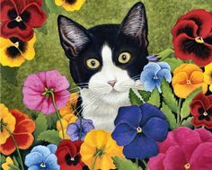 Wide-eyed Kitten in The Pansies (30 pieces)