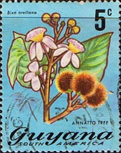 Guyana 1971 Trees and Blossoms SG 545 Annotto Tree Fine Used Scott 136 Other West Indies Stamps HERE