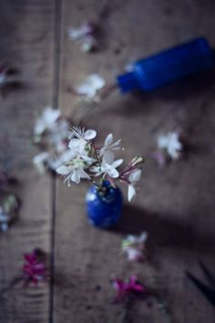 floral Archives -