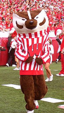 Wisconsin Badgers Football mascot Bucky Badger ~j Wisconsin Badgers Football, Sports Advertising, Nfl, Team Mascots, Sports Update, Madison Wisconsin, College Fun, College Football, Football Team