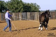 Groundwork Exercise #12: Turn & Go Goal: To be able to wrap the lead rope around the horse's body, gently apply pressure to the lead rope and have him follow the feel to turn 360 degrees and depart onto the circle with energy. More about the exercise: https://www.downunderhorsemanship.com/Store/Product/MEDIA/D/253/