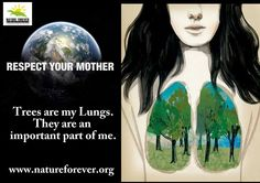 Trees are an important part of our planet. Each one Plant one Share to create awareness.