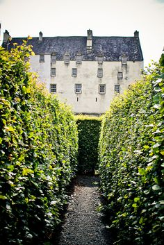 Finding the Exit | Flickr - Photo Sharing! - The garden maze at Traquair House, Innerleithen, Scotland