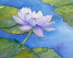 purple water lily watercolor painting archival print 8 x 10