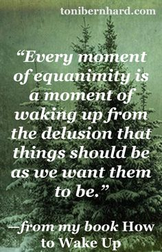 Equanimity, the Virtue of Four