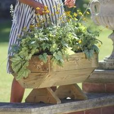 Micro Manger Trough Planter is great for those with limited outdoor space wanting to grow fruit and veg Trough Planters, Wooden Garden Planters, Raised Planter Beds, Raised Beds, Autumn Garden, Fruit And Veg, Grow Your Own, Herbs, Vegetables