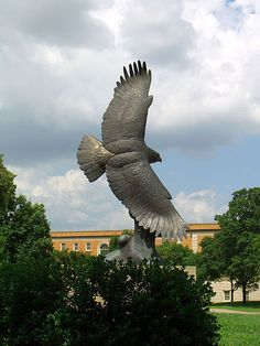 University of North Texas! My alma mater