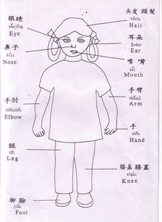 Body parts in Chinese