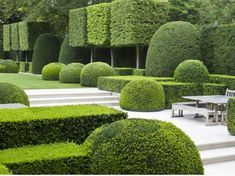 Looking For Easy Landscaping Tips? Modern Landscape Design, Garden Landscape Design, Modern Landscaping, Landscape Architecture, Backyard Landscaping, Landscaping Design, Boxwood Garden, Garden Hedges, Topiary Garden