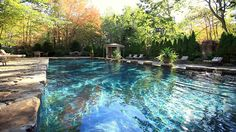 good size pool ~ I would add those silly, peeing monkeys, hanging from an end wall....
