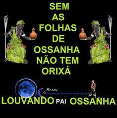 Entidades Ciganas da Umbanda (Clique Aqui) para entrar.: ERVAS DE OSSANHA..ORIXÁ OSSANHA..COMO SE FAZ UM OR...