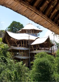 A bamboo-shingled house in the Green Village, a planned sustainable community developed by Elora Hardy.