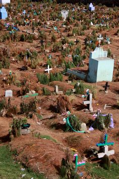 Lifted Graves in Mexico