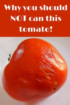 Do NOT can this tomato! Learn why Why this diseased, overripe tomato is not the best choice for canning.