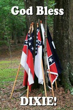 Southern Heritage, Southern Pride, Southern Sayings, Simply Southern, My Heritage, Southern Belle, Confederate Memorial Day, Confederate Flag, Carolina Pride