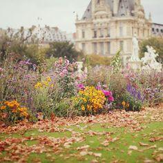 Les Jardins Tuileries