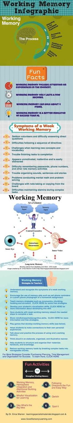 Learning Specialist and Teacher Materials - Good Sensory Learning: Working Memory Definition, Facts, Symptoms and Strategies Infographic